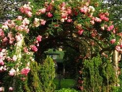 Романтичний стиль в ландшафтному дизайні f197425617a82
